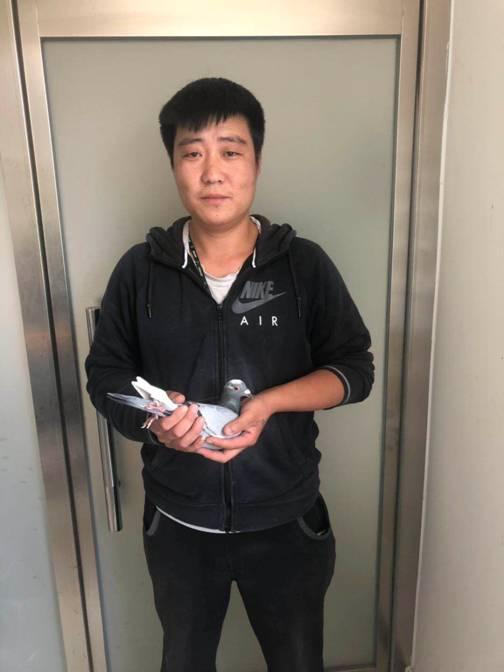 环号为2018-0310136 第五名开尔赛鸽寄养棚5号棚郑长海,环号为2018